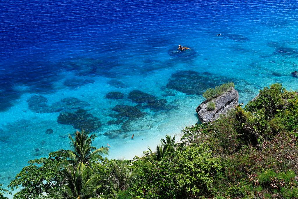 seafari top view