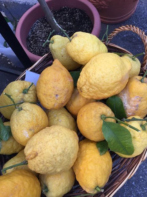 Zitronenliebe