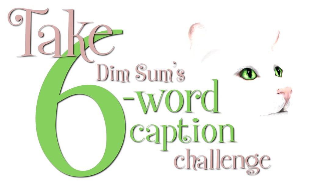 Take Dim Sums 6 Word Caption Challenge
