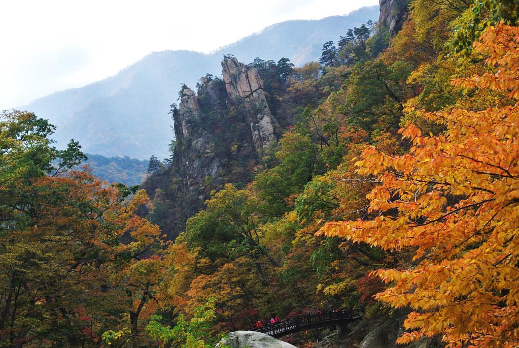 설악산 단풍 By 서배이 설악산 단풍 모습 본사진은 Cc Photo Amp Share 캠페인