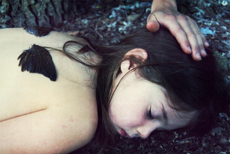 The Sleeping Bird