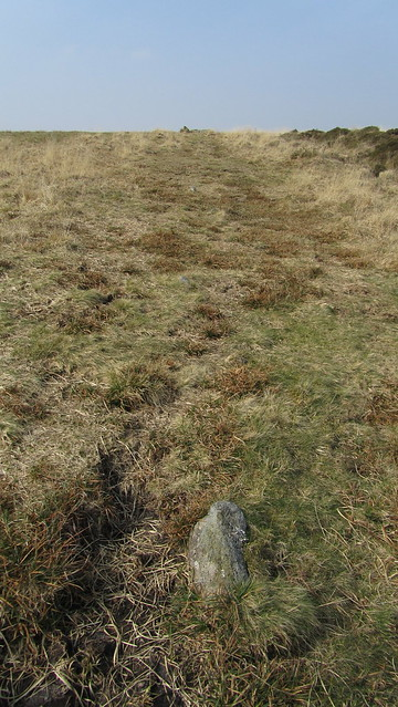 Stone Rows on Holne Moor