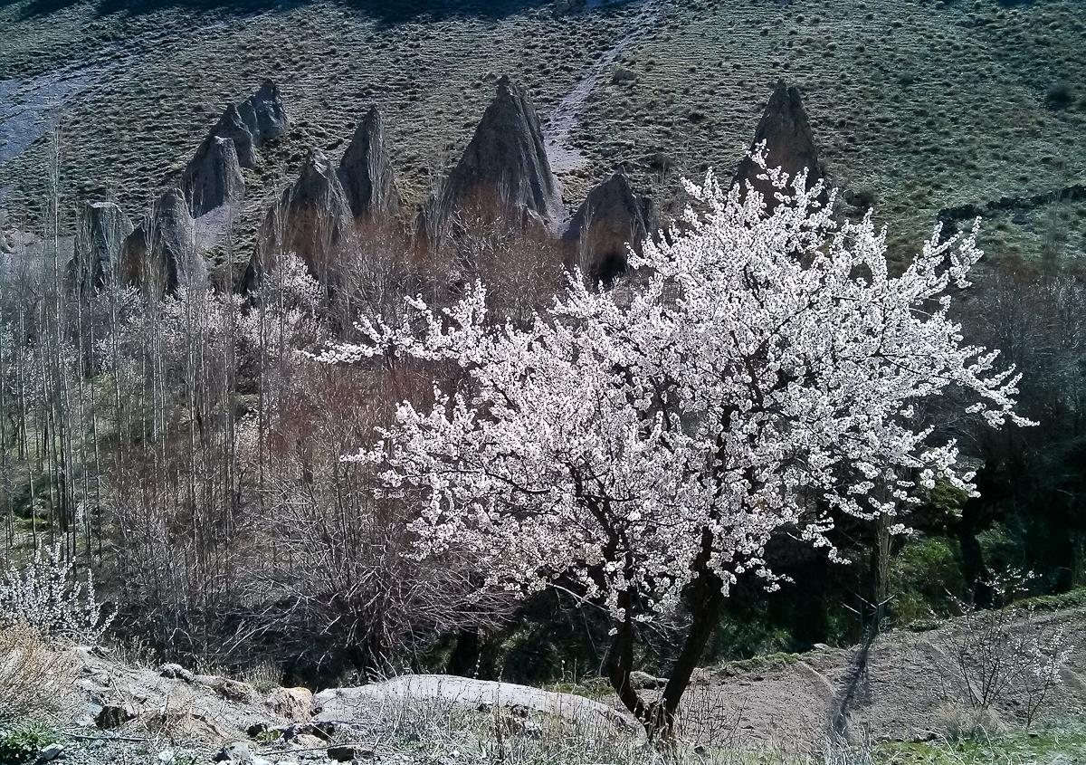 Cappadokia_IMG_20170416_151330