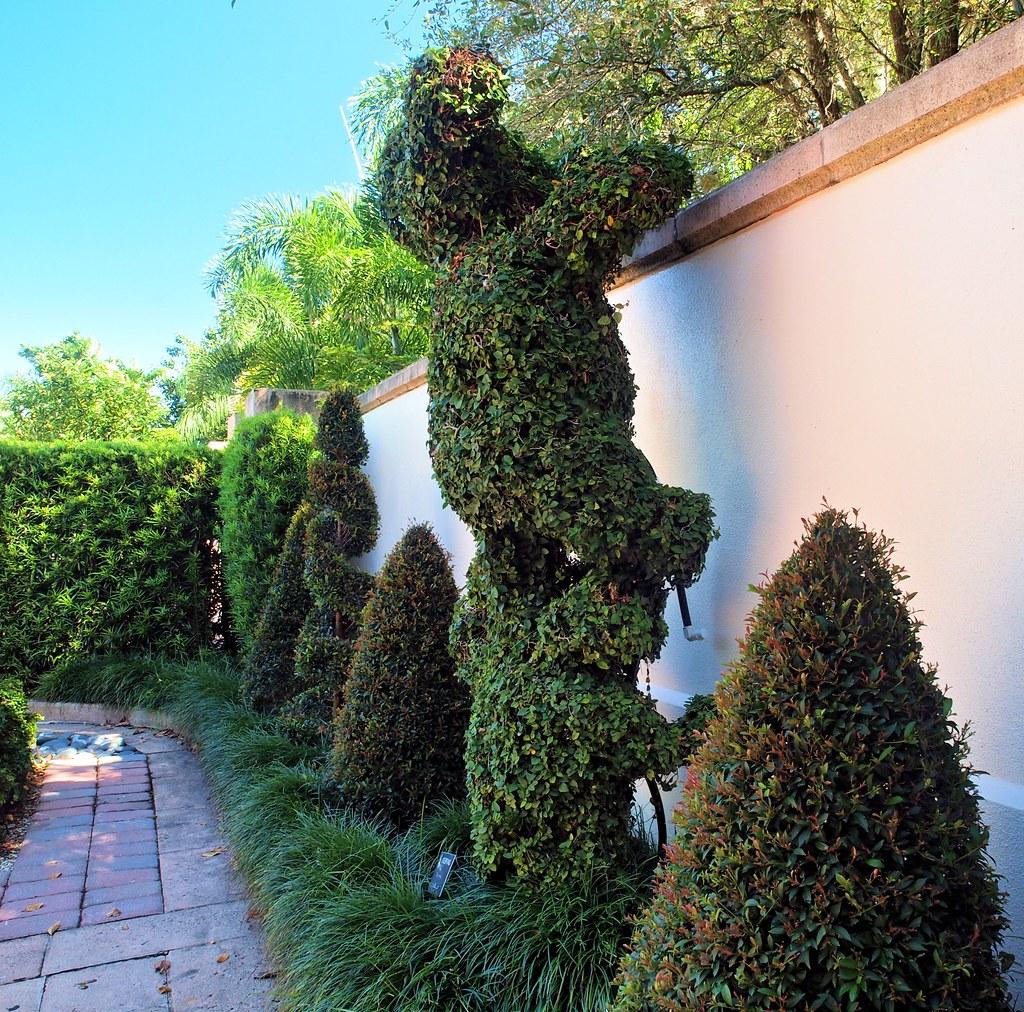 Teddy Bear Topiary Florida Botanical Gardens Largo Fl Cathy Scola Flickr