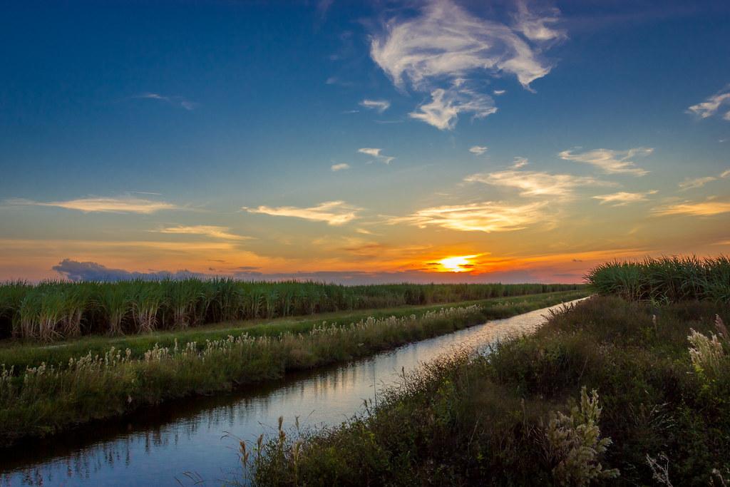 Sugar Cane Sunset Wellington Fl 2242364024 Flickr