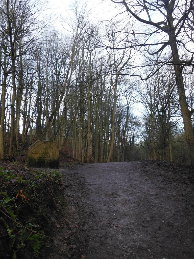 Skipton Wood 16