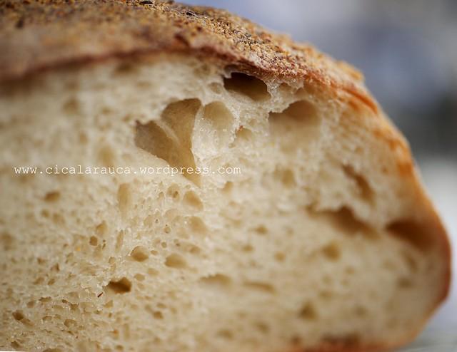 No knead bread con pasta di riporto