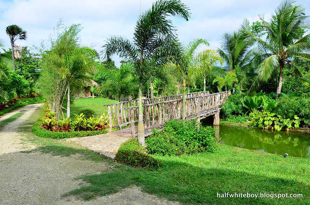 halfwhiteboy - lunhaw farm resort, aloguinsan, cebu 02