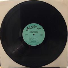 CLARENCE FOUNTAIN:BLESSED ASSURANCE(RECORD SIDE-A)