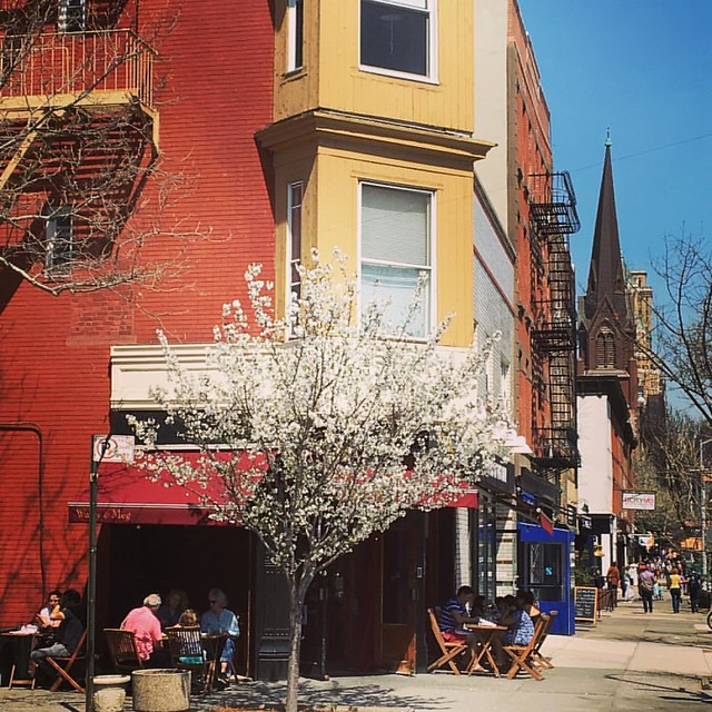 A lovely, sunny day on Court Street. #alfresco #cobblehill #brooklyn #mybrooklynlife