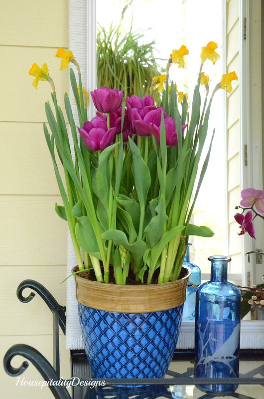 Spring Flowers-Blue and White-Spring Porch-Housepitality Designs