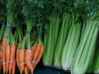 Carrots and Celery | by susanvg