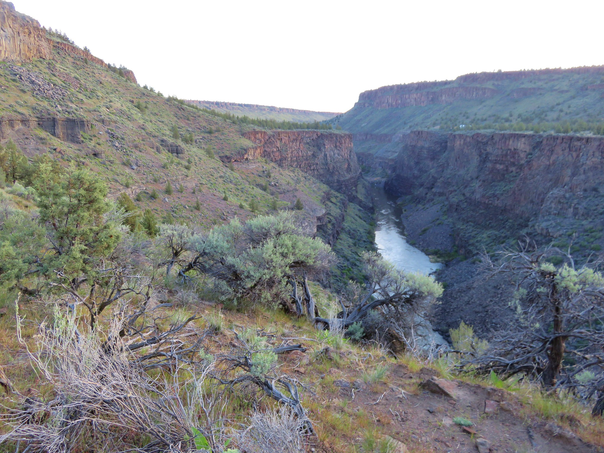 Crooked River Gorge from the Pink Trail