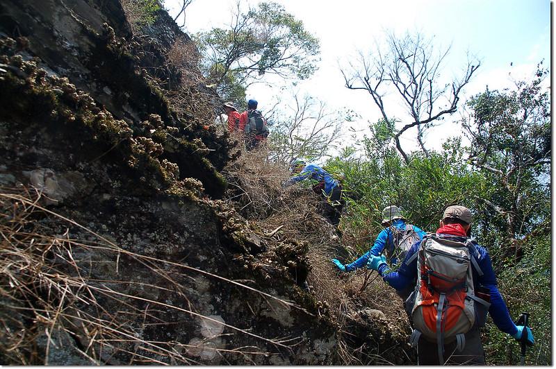 岩壁瘦稜萬年松區 3