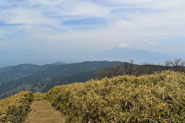 達磨山からの富士山と南アルプス