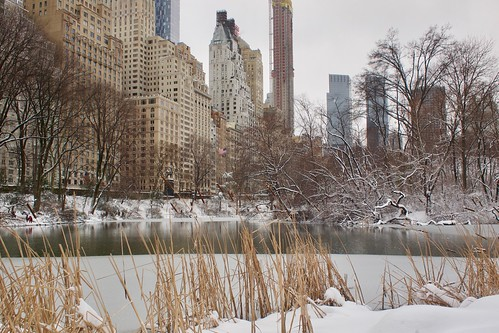 Snowy Central Park | by clagnut