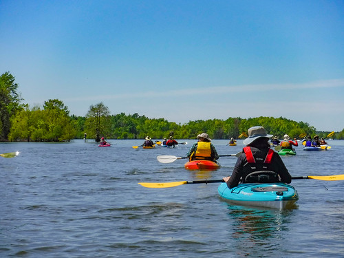 Paddle to Church Island with the Tri-County Blueways Paddlers-031