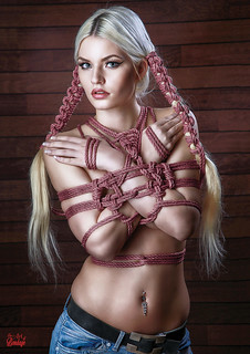 Fine Art of Bondage - Poster Set 01 | by Model-Space