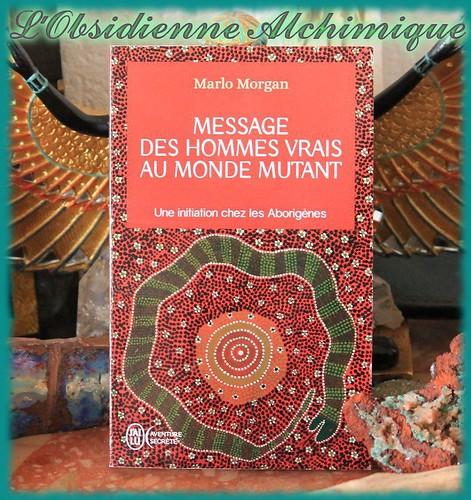 l'Obsidienne alchimique vous propose des retours de lecture régulièrement sur des ouvrages ayant traits à la spiritualité