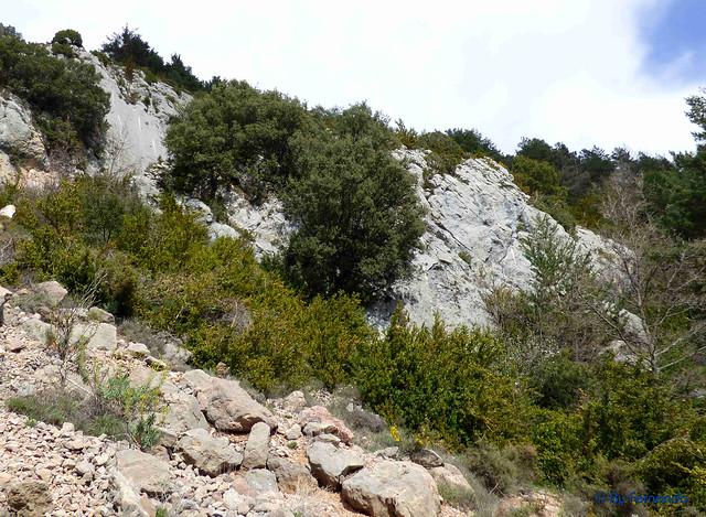 La Vall de Lord -01- Cal Fité (Esportives d'Hortó) -05-Esportives d'Hortó -02- Pared Dos y Tres (15-05-2017)