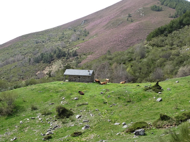 Refugio de Brego en los Ancares