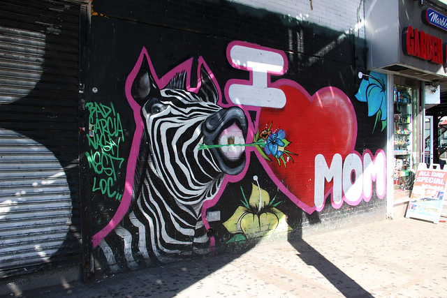 Bronx (7)