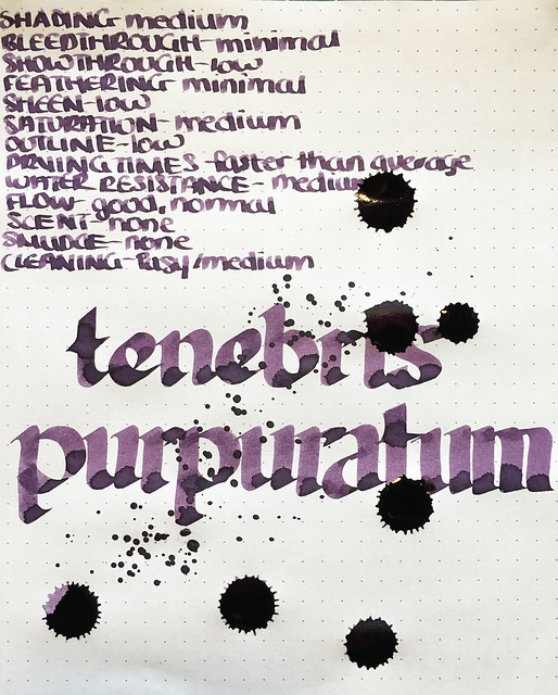 Ink Shot Review Franklin-Christoph Tenebris Purpuratum @1901FC 8