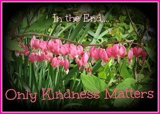 Only Kindness | by Shan Jeniah