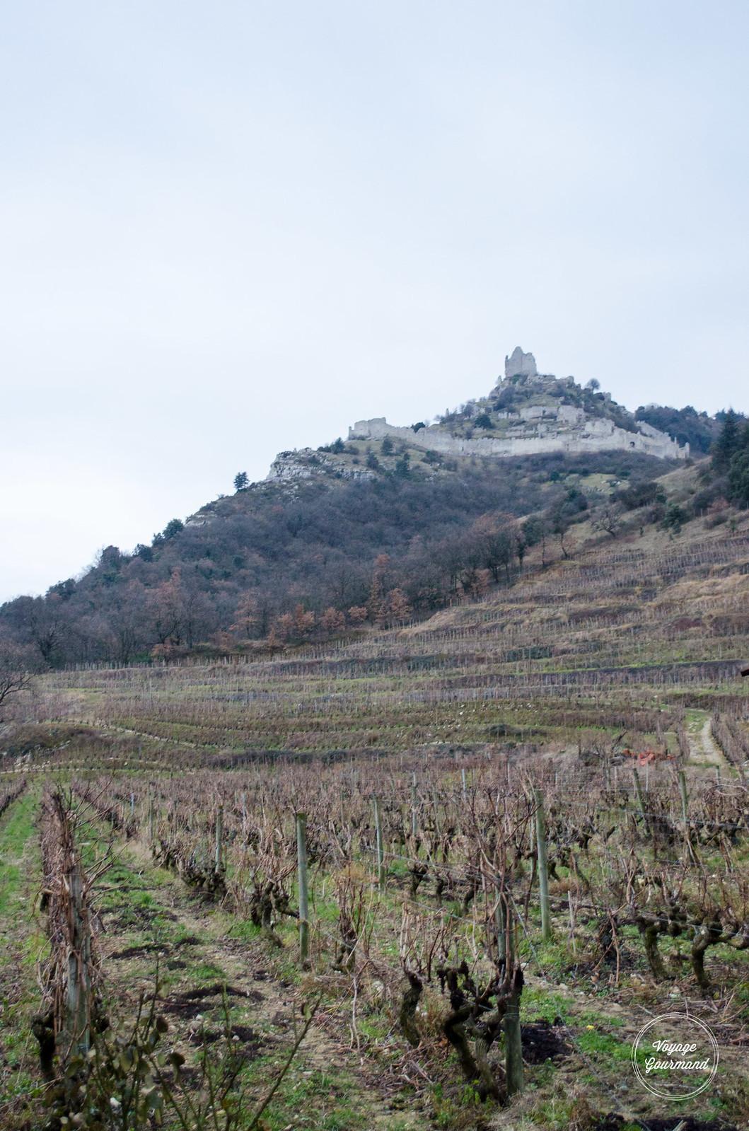 Saint Péray, Domaine Remy Nodin