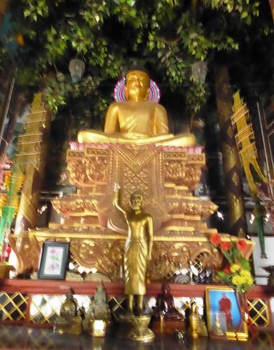 n-lumbini-est-Sri Lanka (9)