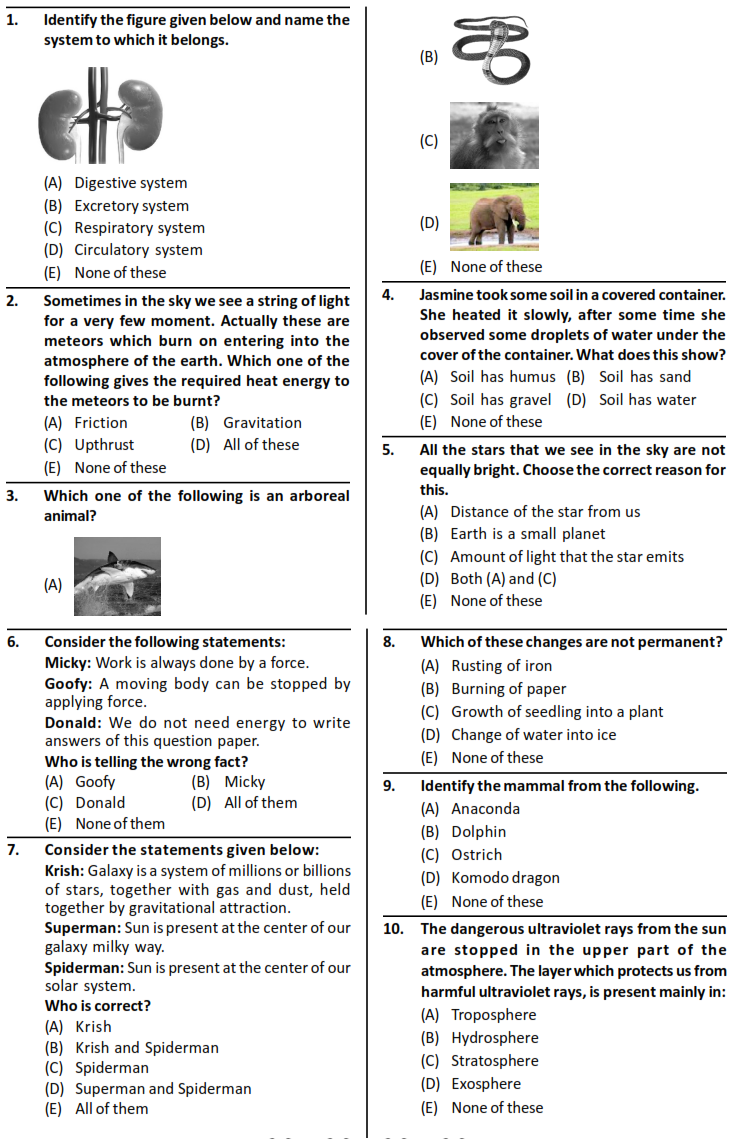 Silverzone iOS Syllabus and Sample Question Paper for Class
