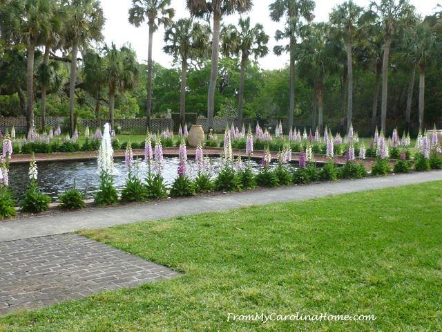 Brookgreen Gardens, Murrells Inlet, SC ~ FromMyCarolinaHome.com