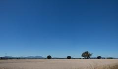 PM115074~84c: A Desert in Western Oregon