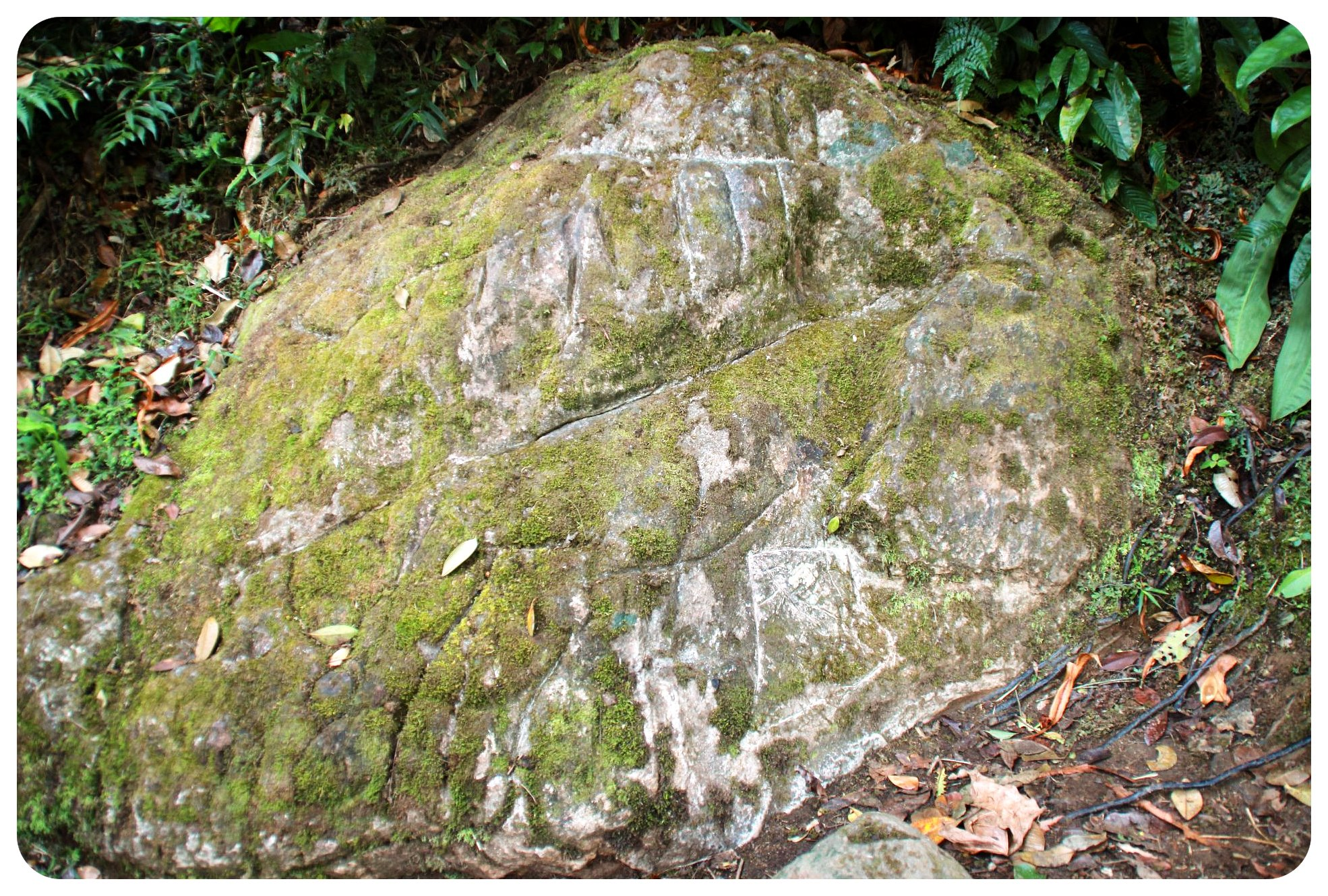 ciudad perdida carved rock