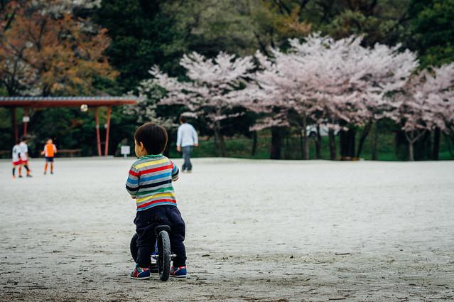 Aichi_Owariasahi_ShinrinPark_01