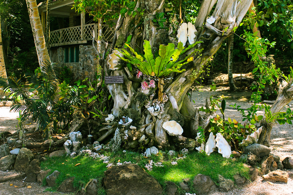 Camiguin Island - Day 3 - 2015 (36)