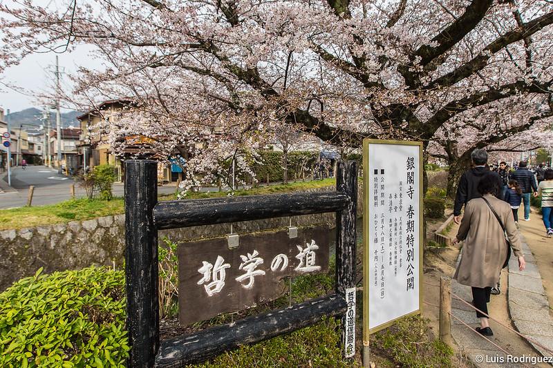 Paseo-Filosofia-Kioto-3