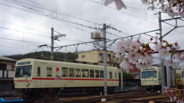 2017/04 叡山電車×きんいろモザイクPretty Days ラッピング車両 #33