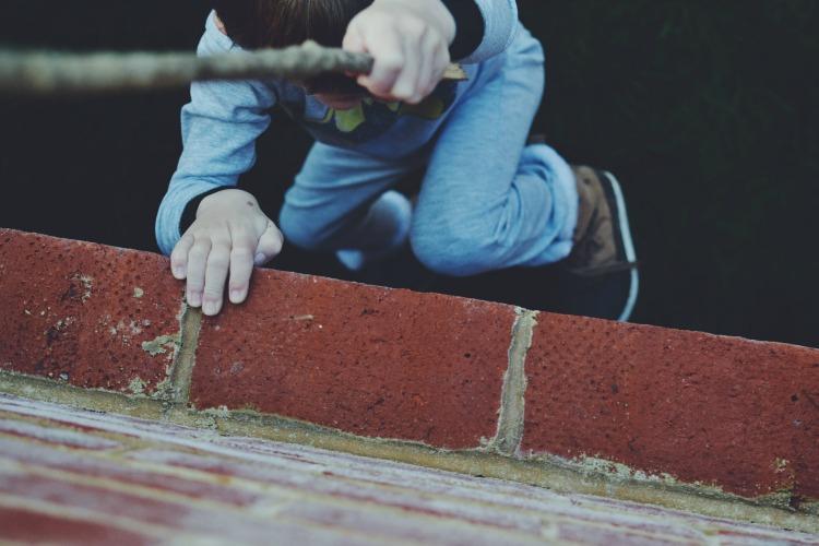 Garden wall climbing