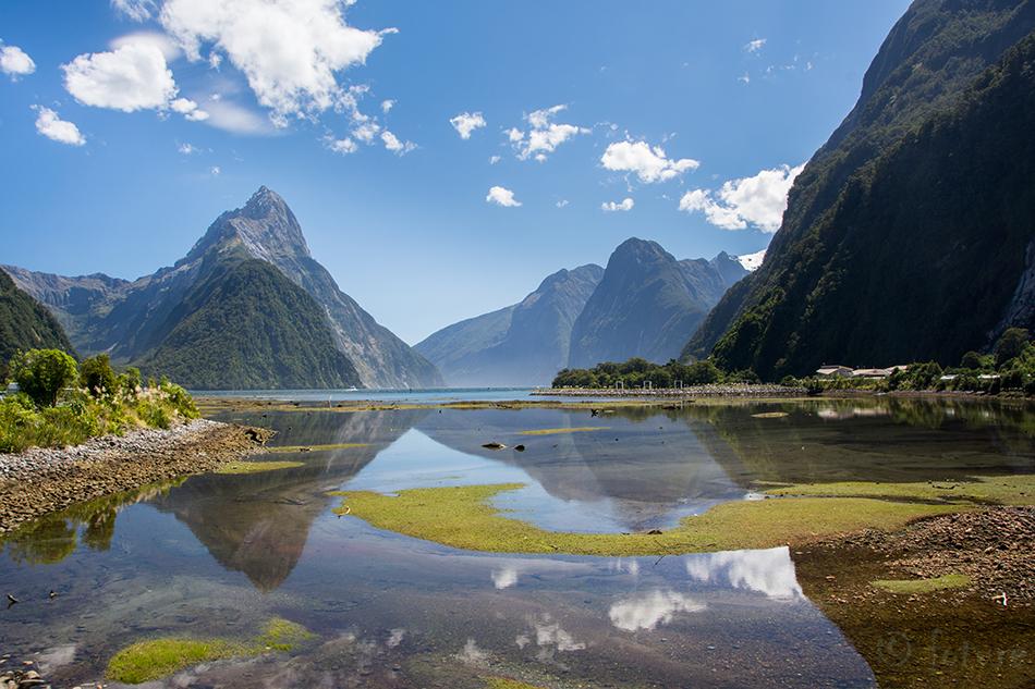 Milford, Sound, Piopiotahi, New, Zealand, Kaido Rummel