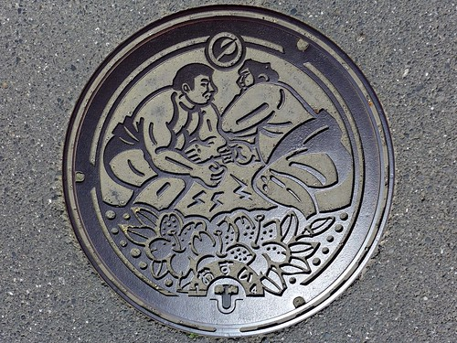 Nomura Ehime, manhole cover (愛媛県野村町のマンホール)