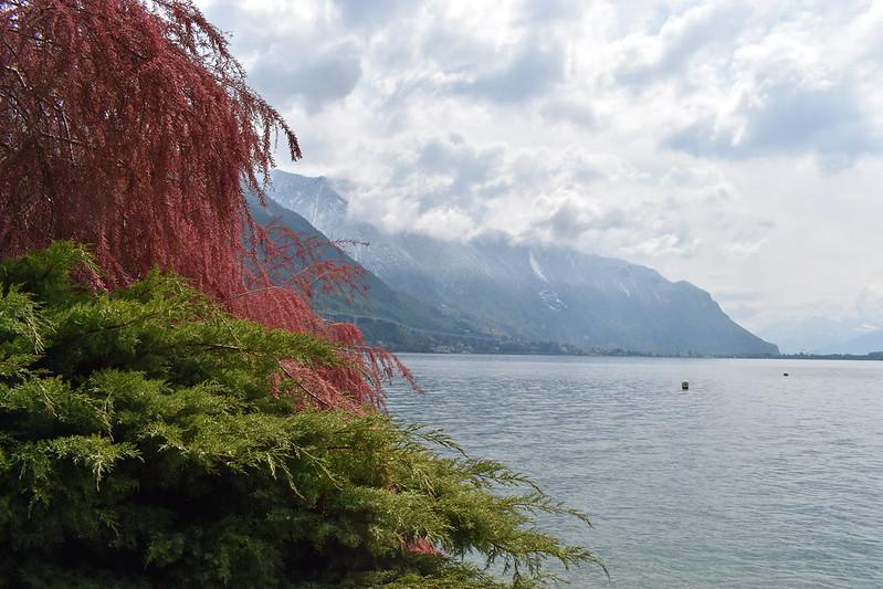 28/04 Montreux & Geneve