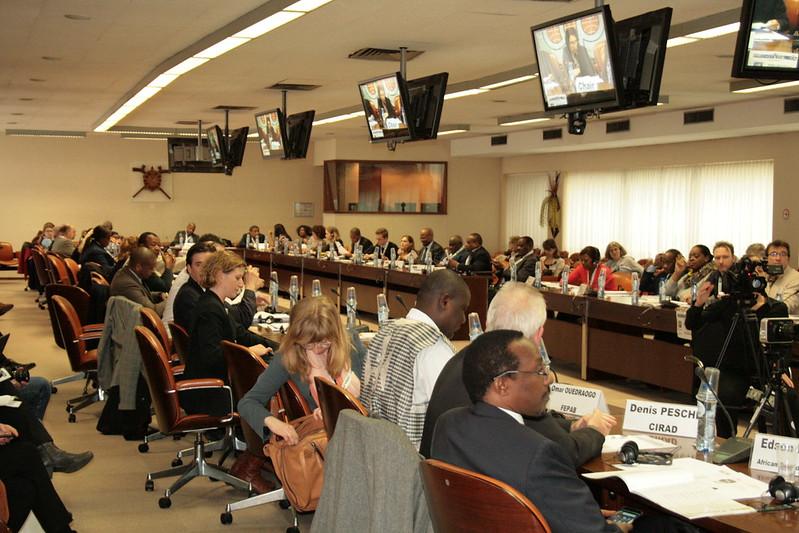 BB 48: Strengthening rural livelihoods in the face of rapid urbanisation in Africa
