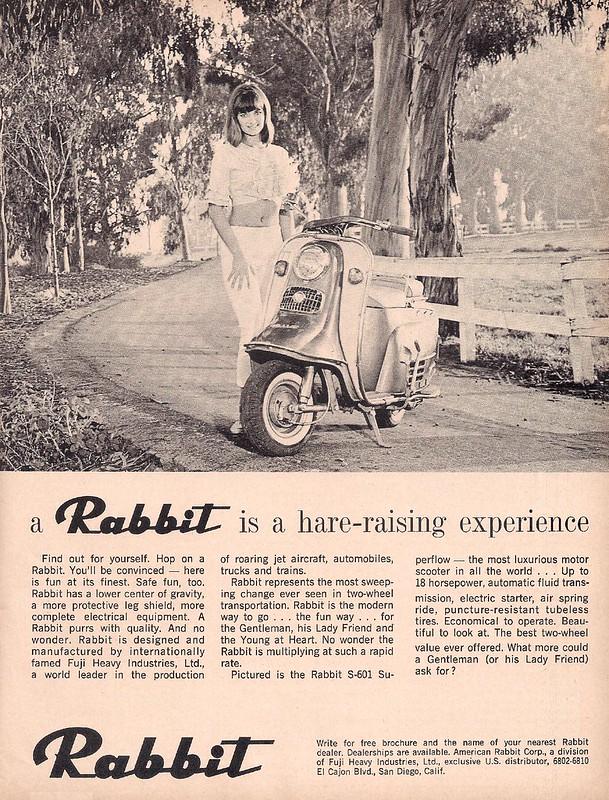 Rabbit scooter