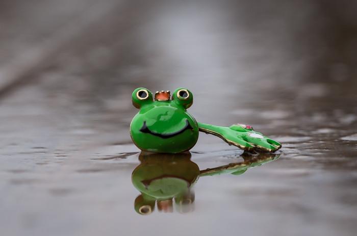 vihreä sammakko vesisade