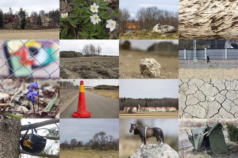 Sixteen Recent Photos