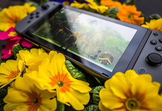 Nintendo Switch and flowers | by Sergey Galyonkin