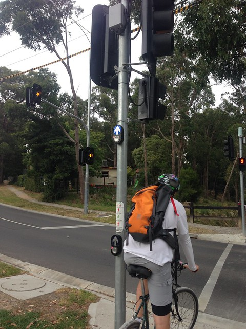 Pedestrian crossing button for horse riders, Mount Evelyn