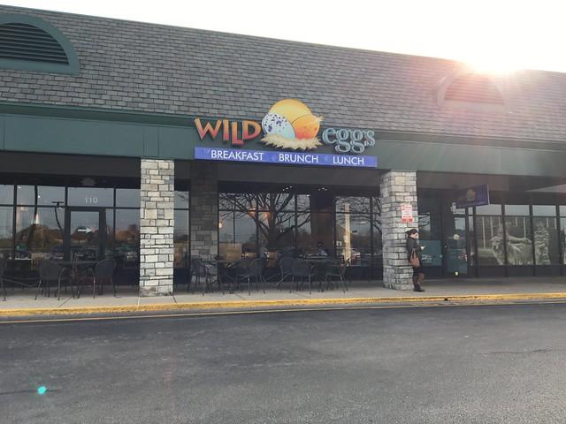 Wild Eggs