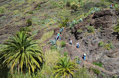 Walking group entering Masca Barranco, Tenerife